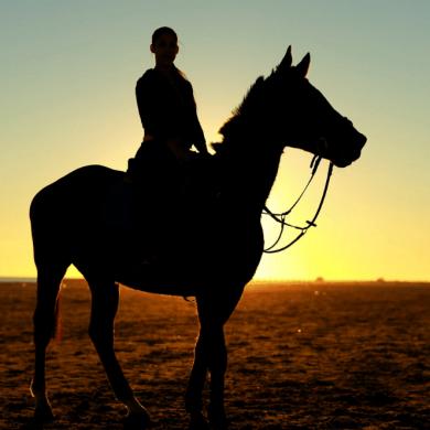 sporten met paard